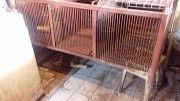 продам 2 клетки для кроликов или нутрий Боярка