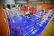 Боксерский ринг напольный и на помосте Днепр