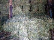Продажа сена люцерны в тюках, нового урожая Краматорск
