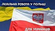 Робота в Польщі. Дрогобыч