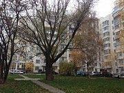 Срочно продам уютную квартиру с видом на взлетную полосу Борисполь