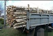 Продам дрова рубаные, кругляк, обрезки разных пород Городня