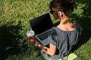 Заробіток для матусь в декреті. Робота онлайн Житомир