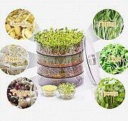 Спраутер для выращивания семян дома Sprouter ProVita, Проращиватель Київ