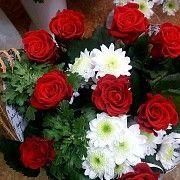 Продам цветы Запорожье