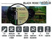 Шланг для поливаNebbia Black Rose (Италия) Белая Церковь