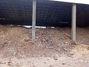 Отдам бесплатно отходы деревообработки Корюковка