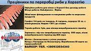 робота в Хорватії для жінок Борислав