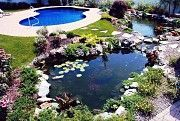 Создание искусственных озер Житомир