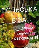ВОЄВОДСЬКА віза!!! Черновцы