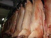 Продам свиные полутуши Дніпро
