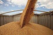Перевозка зерна автотранспортом по Украине Винница
