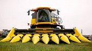 Жатка для уборки кукурузы Mais 8-ми рядковая Бердянск
