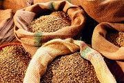 Зерновози для перевезення зерна Україна Кировоград