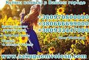 """Elite Hair"""" уже 10 лет занимается наращиванием и продажей продукции из натуральных волос Киев Киев"""