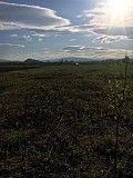 Земельна ділянка під будівництво Або обмін Мукачево