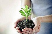 Куплю гербициды, фунгициды Киев