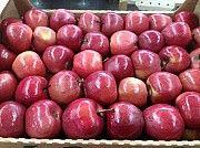 Куплю яблоки оптом Полтава