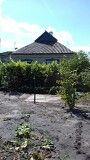 Добротный дом в Елизаветовке . Днепродзержинск