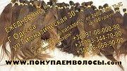 Покупаем волосы ежедневно в Одессе Одесса
