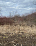 Продаж земельної ділянки під житлову забудову в селі Микитинці Ивано-Франковск