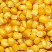 Кукуруза куплю любые объемы. Самовывоз Николаев