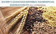 Экспорт с Казахстана зерновых, масличных и бобовых, тел. +77786016143 Дніпро
