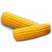 Закуповуємо кукурудзу з будь-якою вологістю Чернигов