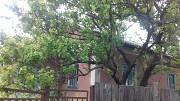 Продам будинок, село Варівськ, Іванківський р-н, Київська обл. Иванков