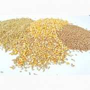 Зерновые. Зерноотходы. Кукуруза. Пшеница. Соя. Киев
