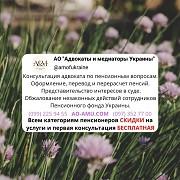 Бесплатная правовая помощь пенсионерам Харьков и область Харьков