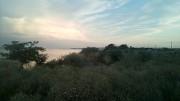 схід сонця над Дніпром зі своєї землі Запорожье