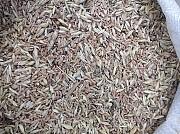 Закуповуємо зерновідходи зернові, олійні, бобові Чернигов