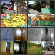 Будинок з великою присадибною ділянкою на 18 сот приватизованої землі за РЕАЛЬНОЮ ціною Орехов