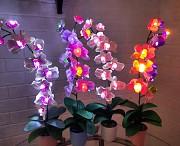 Ночник Орхидея Николаев