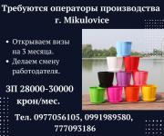 Работа в Чехии для семейных пар. Николаев