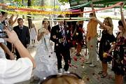 Ді джей на весілля, корпоративну вечірку. Тамада Фастов