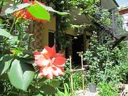 Квартиры для комфортного отдыха в Алуште. Алушта